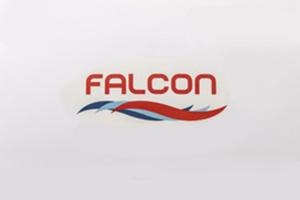 Robots piscina Falcon