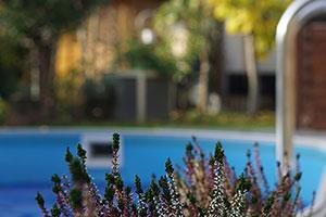 skimmer piscinas